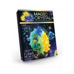Набір для проведення дослідів Magic crystal - Elegant parrot - Dankotoys